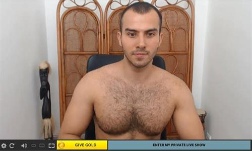 Hairy chested cam model