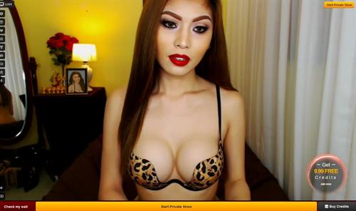 Stunning shemale babe, on LiveJasmin.com